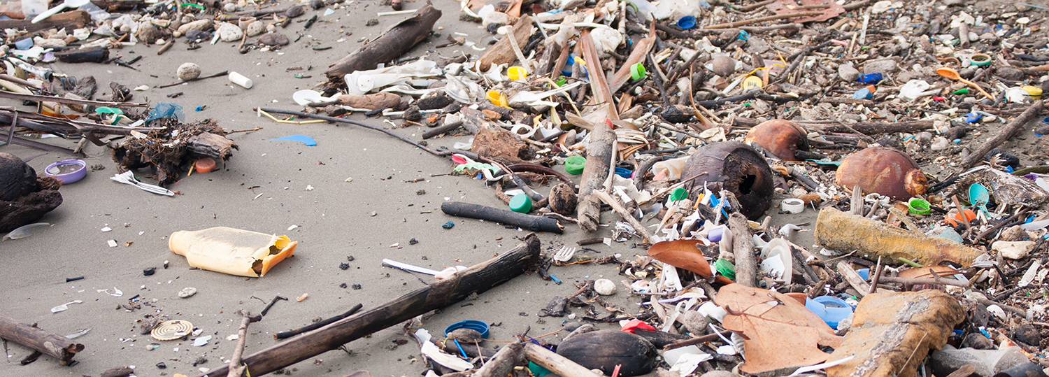Beach pollution. Plastic bottles and other trash on sea beach of Livingston, Guatemala.
